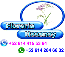 Floreria Heseney